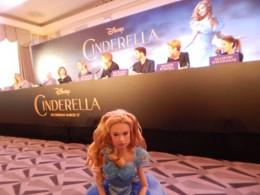 Cinderella doll (4)