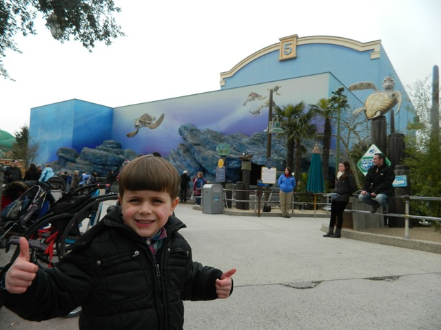 Finding Nemo Amp Dory In Disney World Florida And Disneyland