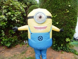 DM3 rubies minion costume (1)