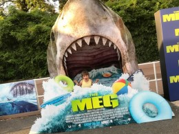 meg screening (3)