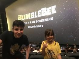 Bumblebee fan screening (10)