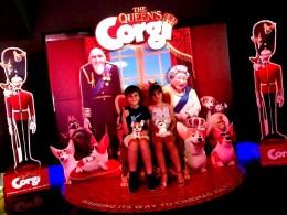 queens corgi party (4)