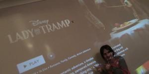 Disney + Lady...