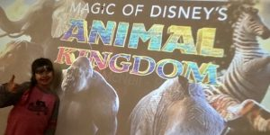 Disney + Magic […]