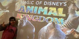 Disney + Magic […]